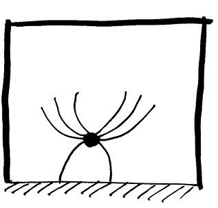 drudel-spinne