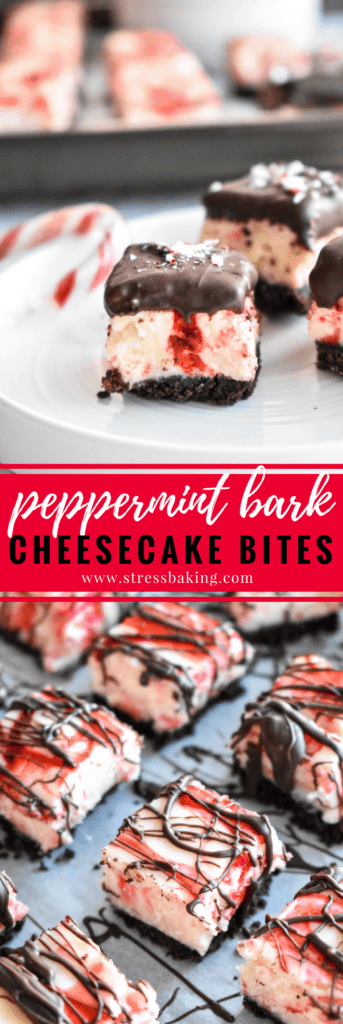 Peppermint Bark Cheesecake Bites: A chocolate cookie crust is topped with creamy and rich peppermint cheesecake, loaded with white chocolate peppermint pieces, crushed candy canes and topped off with more chocolate. Bite sized holiday dessert perfection! | stressbaking.com