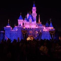 Disneyland Castle Night