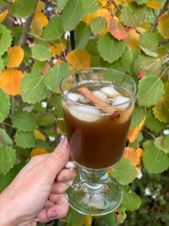Spiced apple twinnings of London chai tea