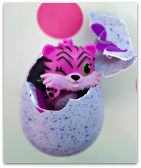 Our First Hatchimal CollEGGtible is hatched