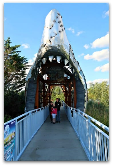 When you enter the Shark Hotel at Thorpe Park you walk through the shark's mouth to get the accommodation which the kids all love