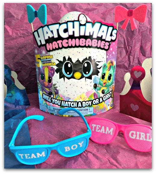 Hatchimals HatchiBabies Will it be a boy or a girl