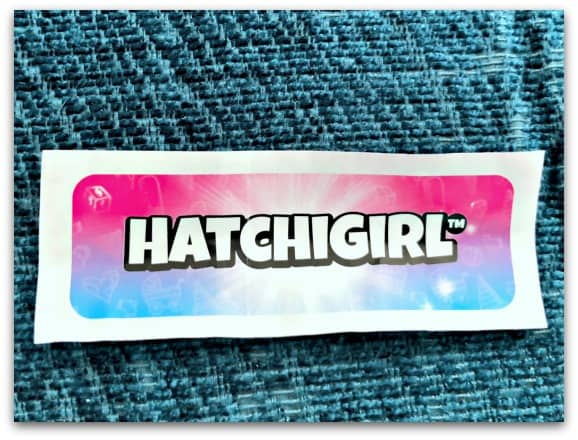 The HatchiBaby Egg contains a secret message confirming if you have a hatchiboy or a hatchigirl