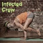 infectedcrow-300x300