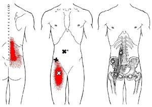 stretchingpro-etirements-hanche-massage-psoas