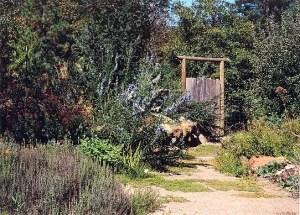 Lifeline Medicinal Herb Garden, 18 medicinal herb seed packets, organic