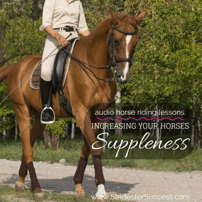 Increasing Your Horses Suppleness