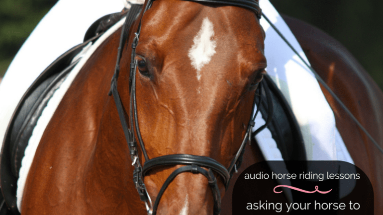 Asking Your Horse to Bend