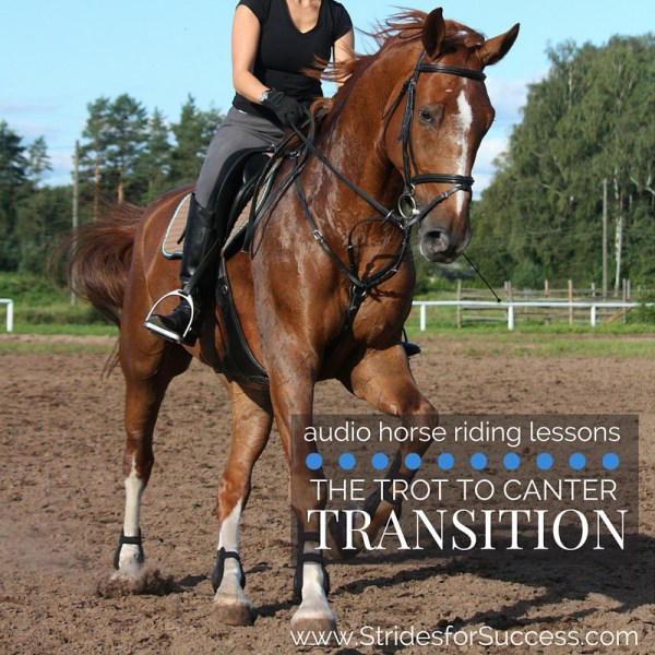 Trot to Canter Transition
