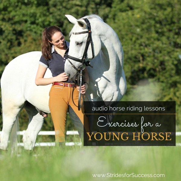 Exercises for a Young Horse