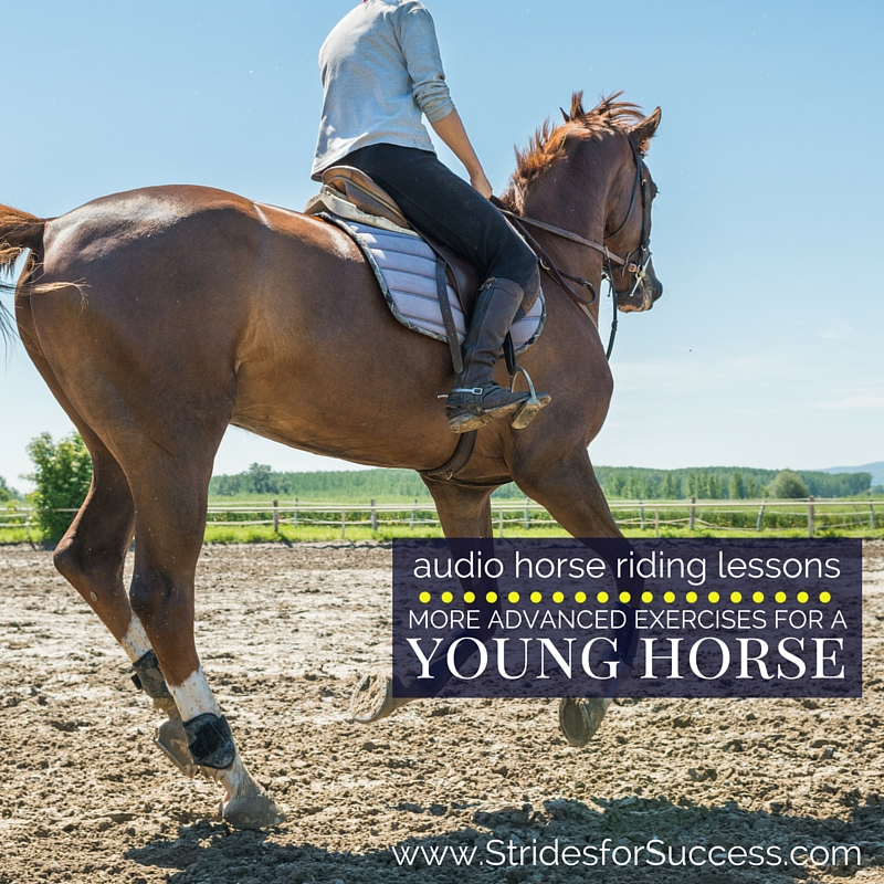 More Advanced Exercises for Your Young Horse