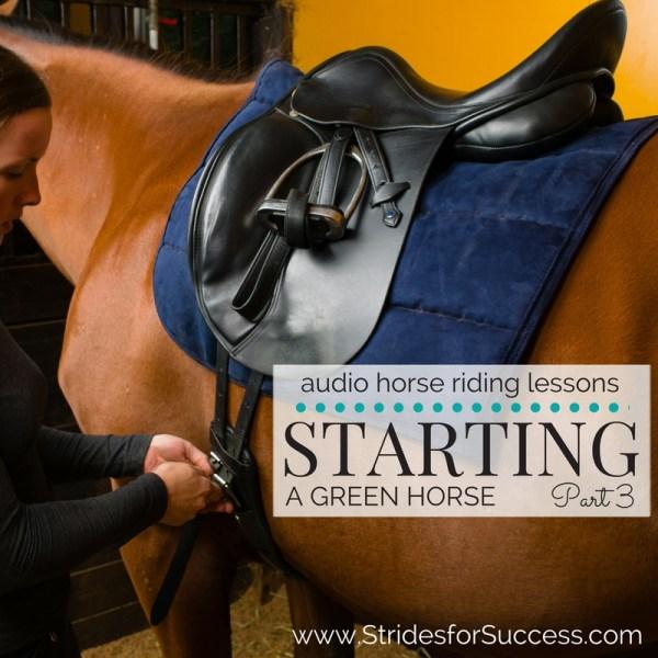 Starting a Green Horse - Part 3