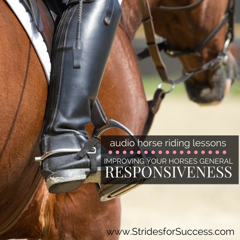 Improving Your Horses General Responsiveness