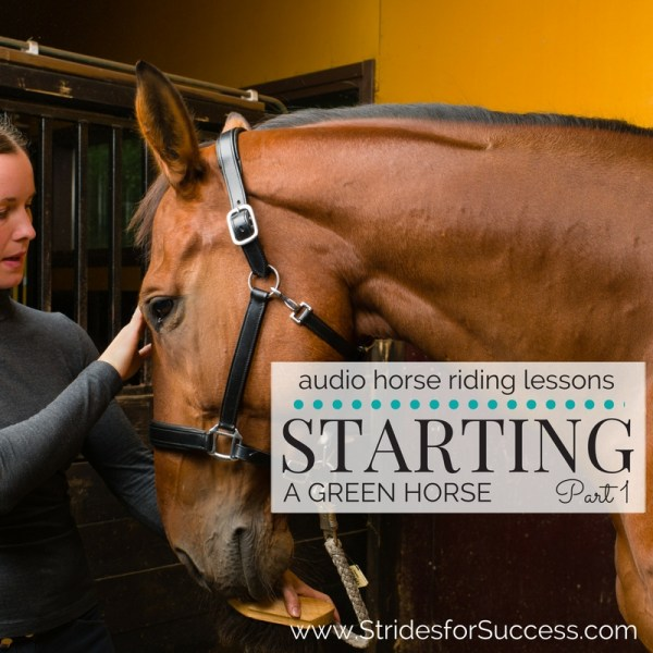 Starting a Green / Young Horse - Part 1