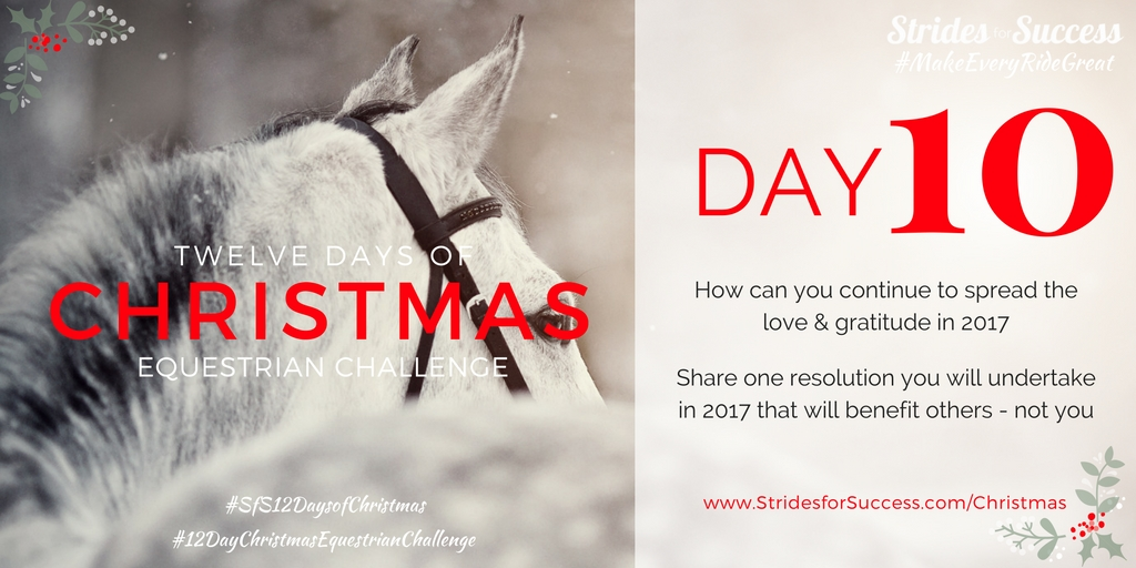 Strides for Success 12 Days of Christmas Equestrian Challenge Day 10