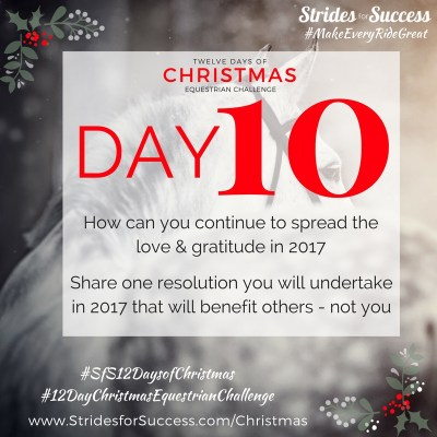 Day 10 ~ SfS 12 Days of Christmas Equestrian Challenge