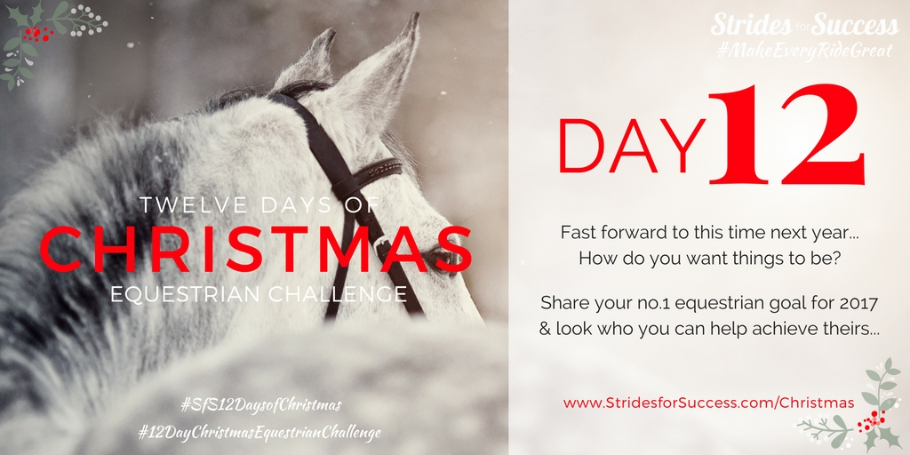Strides for Success 12 Days of Christmas Equestrian Challenge Day 12
