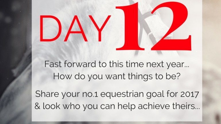Day 12 ~ SfS 12 Days of Christmas Equestrian Challenge