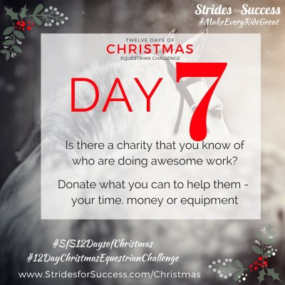 Day 7 ~ SfS 12 Days of Christmas Equestrian Challenge