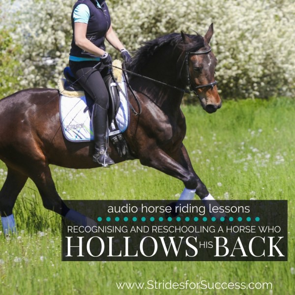 Recognising and Reschooling a Horse who is hollow through his Back