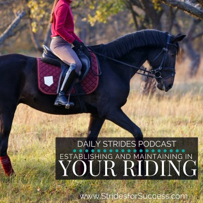 Understanding 'Establishing' and 'Maintaining' in Your Riding