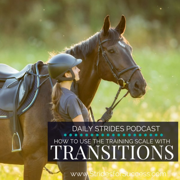 How to Use the Training Scale with Transitions in Your Riding