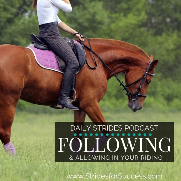 Following & Allowing in Your Riding