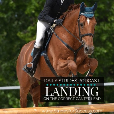 Landing on the Correct Canter Lead After a Fence