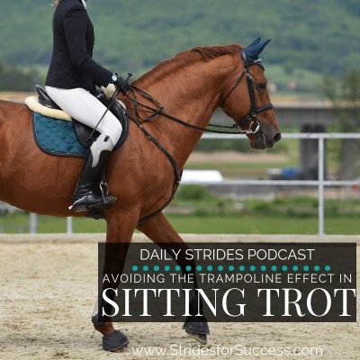 Avoiding the Trampoline Effect in the Sitting Trot