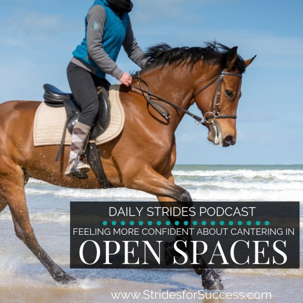Feeling more Confident Cantering in Open Spaces