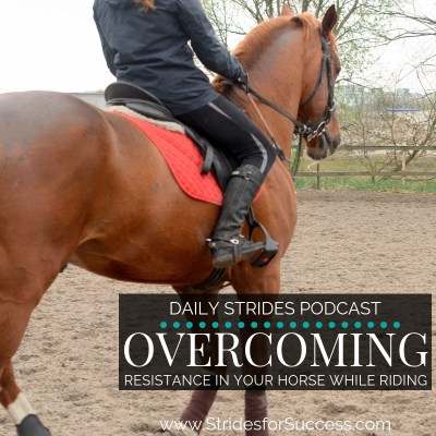 Overcoming Resistance in Your Horse While Riding