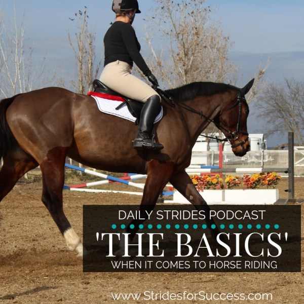 What are the Basics when it Comes to Riding