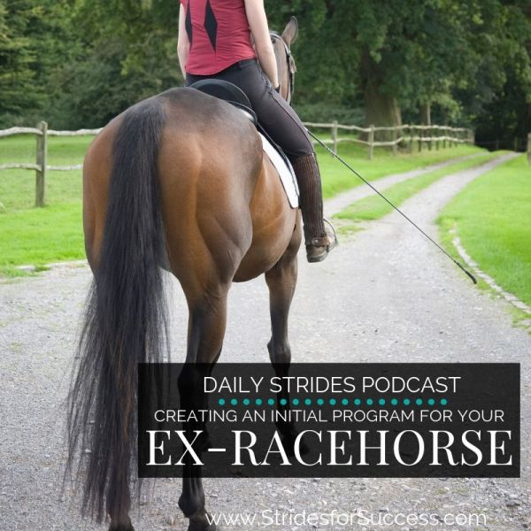 Creating an Initial Program for Your Ex-Racehorse
