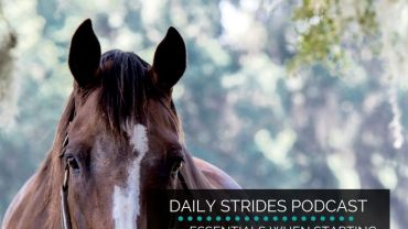 4 Essentials for Getting Started with Lunging for Riding