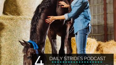 4 Ways to Work Your Horse When Time is Short…