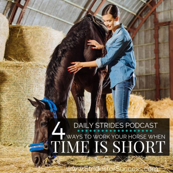 4 Ways to Work your horse when time is short