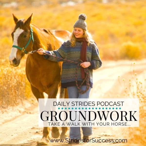 Groundwork; Take Your Horse for a Walk