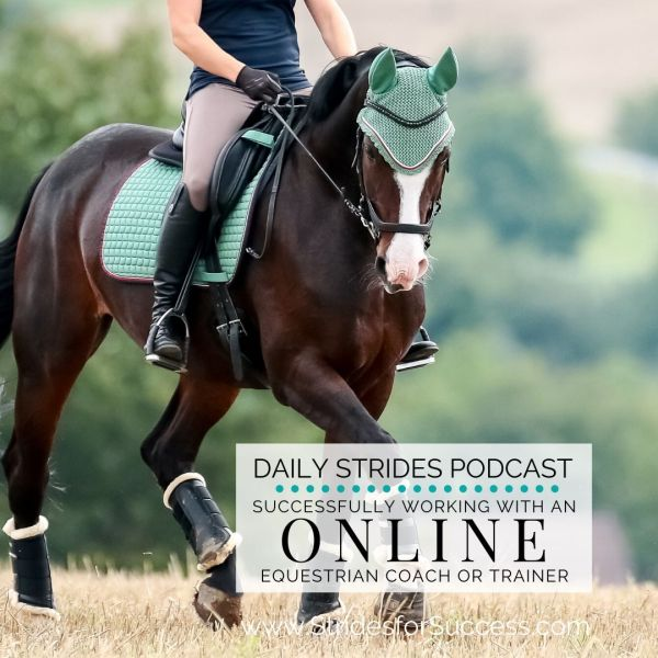 Working with an Online Equestrian Coach or Trainer