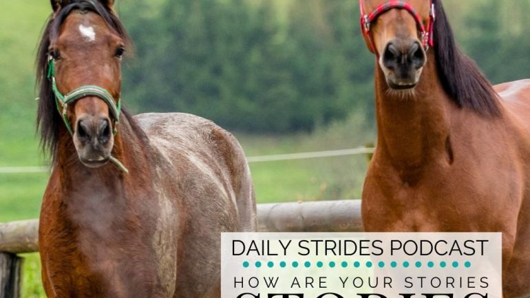 How Your Stories are Influencing Your Horse Riding