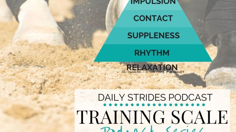 [Training Scale] Part 1 – Finding Rhythm in Your Training