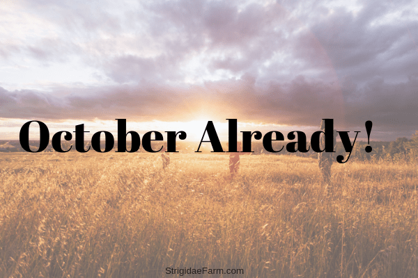 October Already