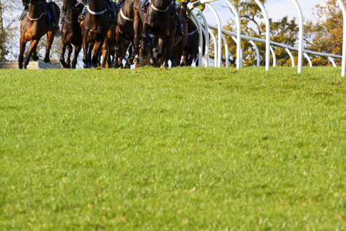 Targets are set for the course to ensure reasonable horse and jockey safety
