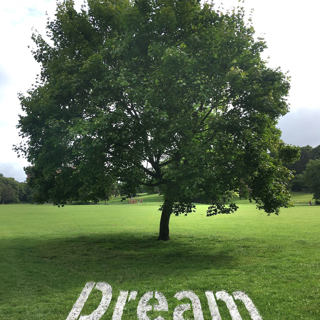 The word 'dream' written out in large letters underneath a tree