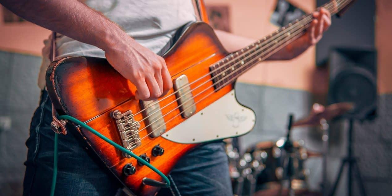 Humbucker Bass Pickup Types