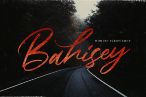 Bahisey - Modern Script Font