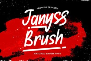 Janyss Brush - Natural Brush Font