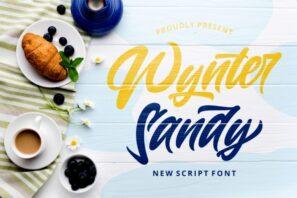 Wynter Sandy - Bold Script Font