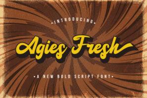 Agies Fresh - Retro Bold Script Font