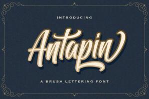 Antapin - Bold Script Font